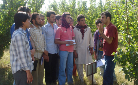 Internship students in Badam Bagh farm